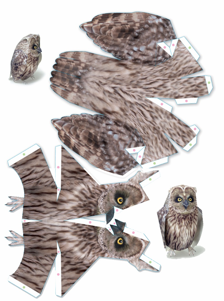 owl thesis writing